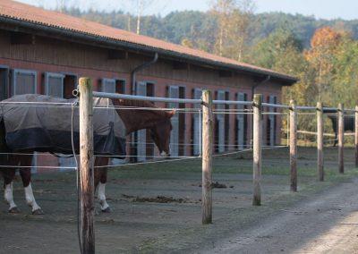 Pferdepension Heino Henning Klinter-Hof Hechthausen