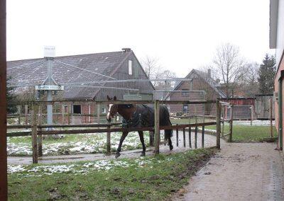 Klinter Hof Pferdepension Führanlage